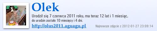 http://olus2011.aguagu.pl/suwaczek/suwak3/a.png